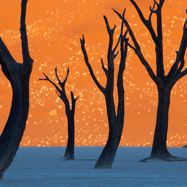 Photograph in Namibia not drawing.
