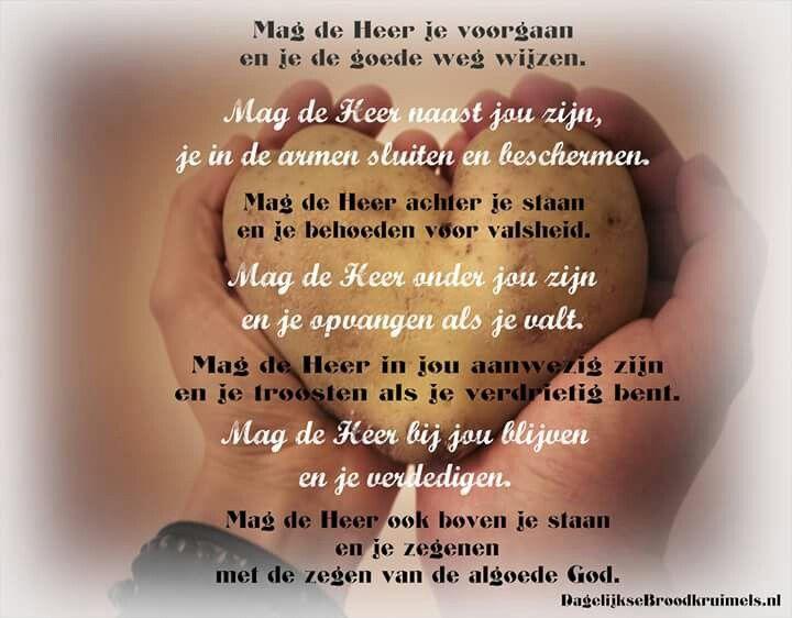My Lyrics: Kraantje Pappie-Achtbaan Songtekst en …