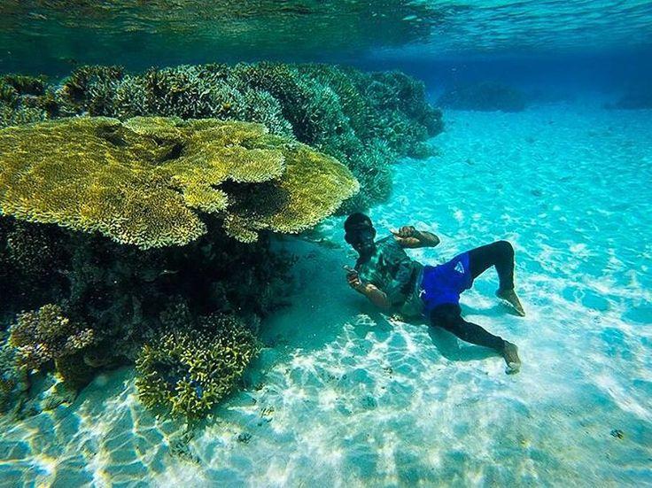 """Ini adalah terumbu karang sekitar Pulau Bidadari, Pagimana.  Masih banyak terumbu karang alami sekitaran pulau ini.  Oh ya, dari Pelabuhan Pagimana selain…"""