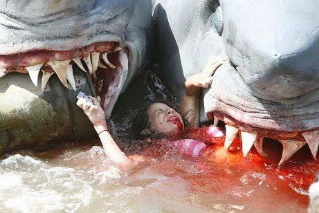 Shark Attack - 2 Headed