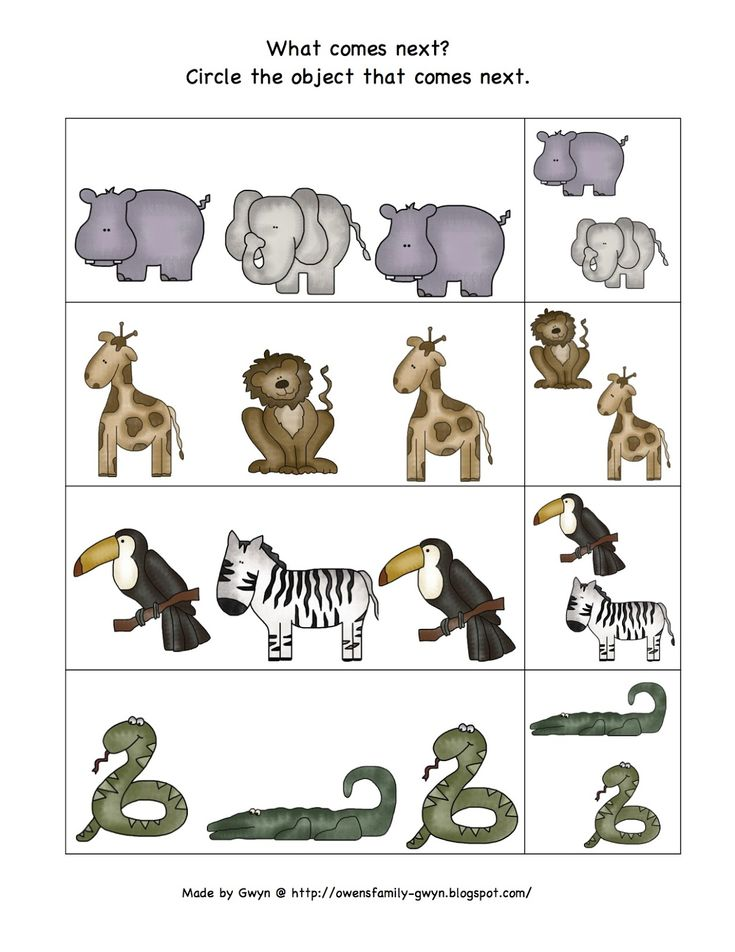 1000 images about PreK Zoo Theme