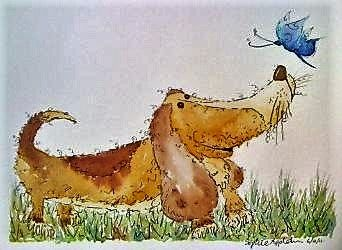 Bertie Basset and Butterfly - Illustrated by Sophie Appleton