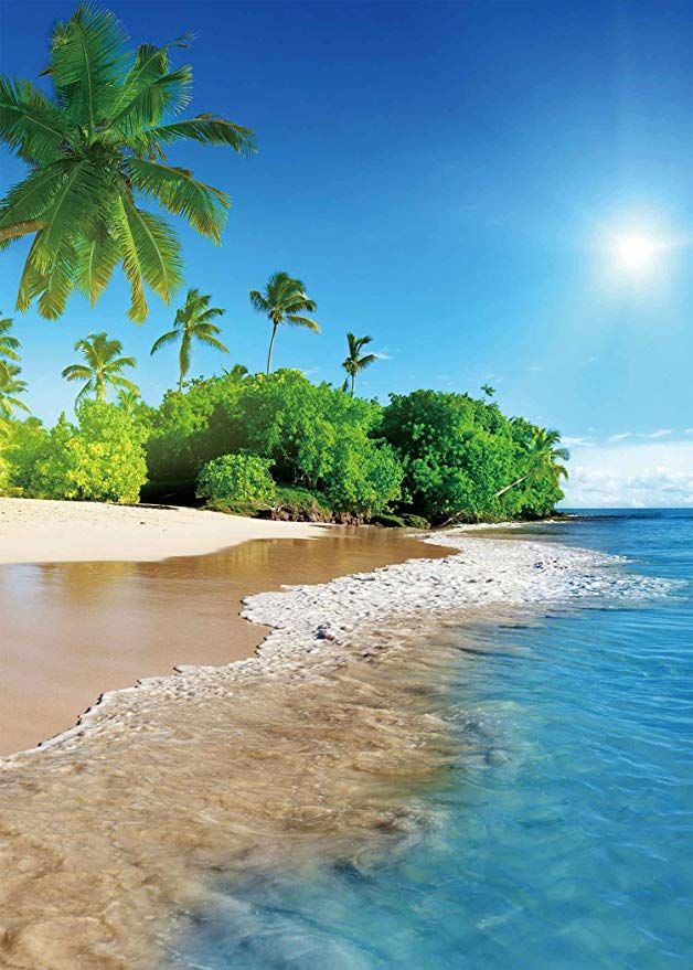 Amazon Com Lyly County Photography Background 5x7ft Summer Sunshine Natural Beach Coast Tropical Para Landscape Pictures Beach Wallpaper Beautiful Landscapes