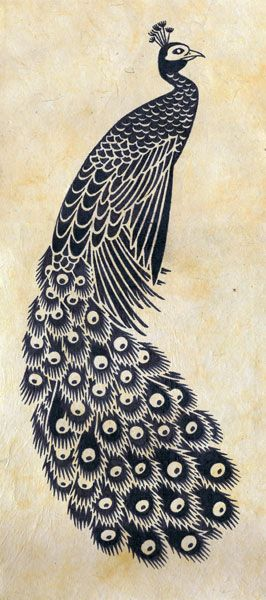 Best 25 Peacock Drawing Ideas On Pinterest