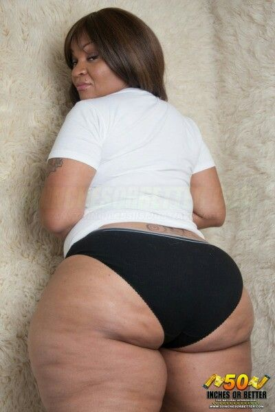 bbw hall of fame gallery