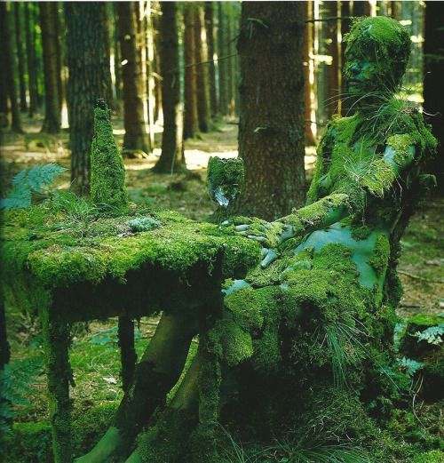 "phlegmfatalee: "" Photography by Veruschka von Lehndorff ""When the axe entered the forest, the trees said 'Look, the handle is one of us!'"" — yoruba proverb """