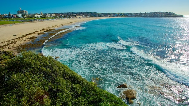 Blessed with over 100 beaches...Sydney, Australia