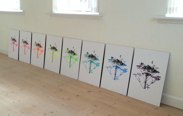 365 moodboards i 2014. Moodboard #75: Serigrafi / silketryk med skærmblomster. Titel: Hvilken farve i regnbuen er du? Fotograf: Susanne Randers