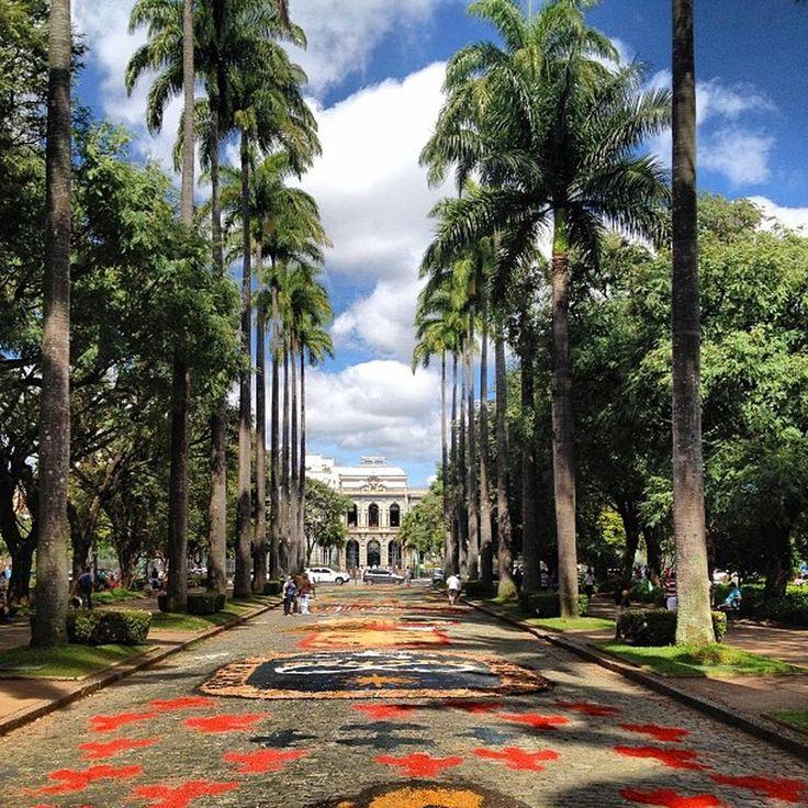 Praça da Liberdade - Savassi - Belo Horizonte, MG