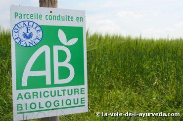 """""""Les critiques ont souvent affirmé que l'agriculture biologique nécessite beaucoup plus de terres que l'agriculture """"chimique"""" conventionnelle pour produire la même quantité de nourriture. Faux, selon des chercheurs de l'Université de l'Etat de Washington.""""... http://www.bioaddict.fr/article/l-agriculture-biologique-peut-nourrir-la-planete-et-sans-l-abimer-a5302p1.html?"""
