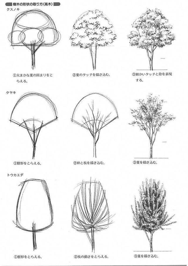 Formatos Para Arvores Esboco De Arquitetura Esboco De Paisagem