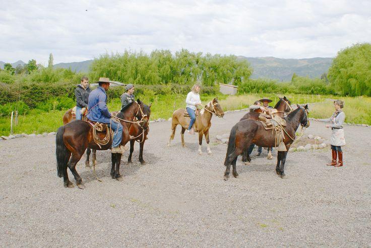 paseos a caballo en www.barricalodge.cl - Sta Cruz. un weekend en pareja.
