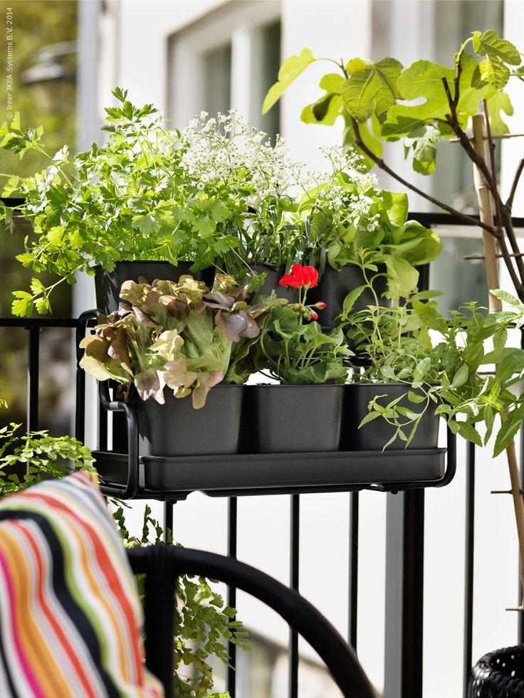 Herb Garden Ideas For A Balcony 299 best ikea balcony images on pinterest   balcony ideas