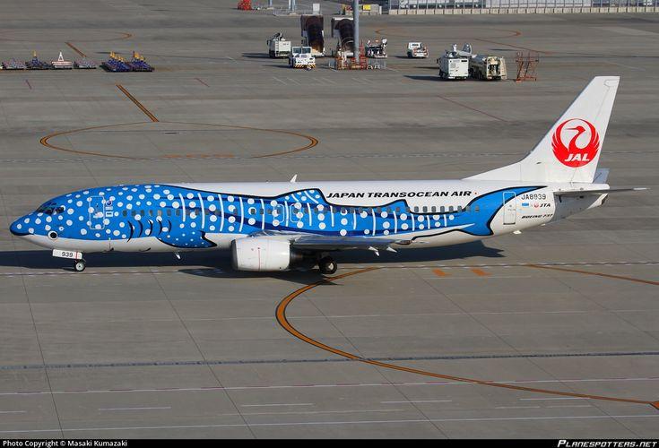 Japan TransOcean Air-JTA (JP) Boeing 737-4Q3 JA8939 aircraft, painted in ''Jinbei Jet'' specil colours Dec. 2012, skating at Japan Nagoya Chubu  Centrair Intewrnational Airport. 27/11/2013.(Jinbei=Whale Shark).