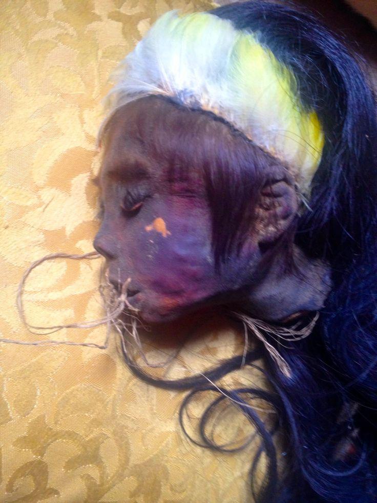 Genuine Human Shrunken Heads For Sale! Info@RealShrunkenHeads.com www.RealShrunkenHeads.com