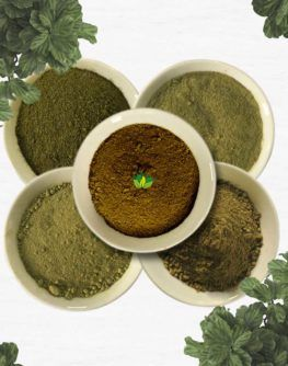 Sulawesi kratom sample pack include 5 strains 500grams each strains: Red sulawesi Green Sulawesi maeng da sulawesi white sulawesi yellow sulawesi Only 150$ shipped - EMS Express #kratom #buykratom #mytraginaspeciosa #cheapkratom #kratompowder #kratomindo #kratomsupplier #kratomvendor #kratomeffect #kratomtea #sulawesikratom #kratomforsale #kratomnearme #kratomwithdraw #kratomsample #freekratom
