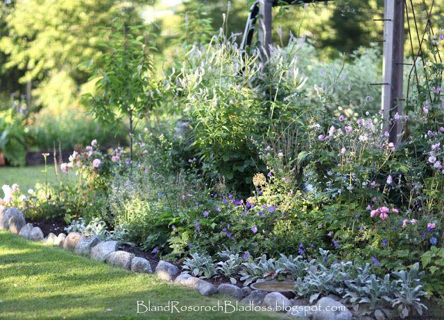 Bland rosor och bladlöss: Rabatter this bloggers garden is truly amazing!