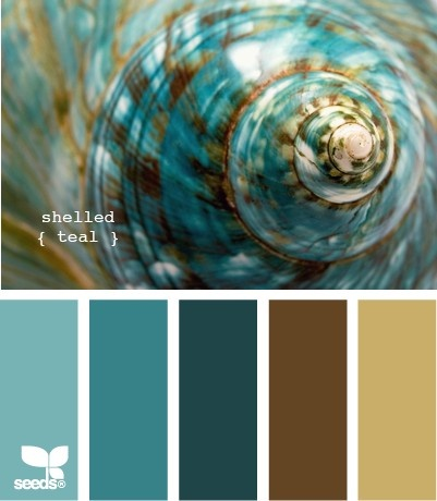 shelled teal---really like this for wedding colors.. the darker teal brown and light brown