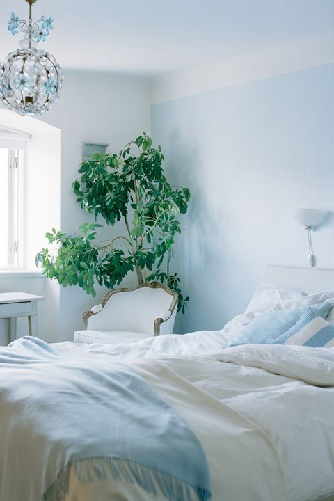 The Best Room Colors For Your Zodiac Sign Light Blue