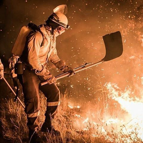 FEATURED POST  @sullivan_photography -  No fire too tough for the men in yellow. Vermont Fire Harmanus - South Africa . . TAG A FRIEND! http://ift.tt/2aftxS9 . Facebook- chiefmiller1 Periscope -chief_miller Tumbr- chief-miller Twitter - chief_miller YouTube- chief miller  Use #chiefmiller in your post! .  #firetruck #firedepartment #fireman #firefighters #ems #kcco  #flashover #firefighting #paramedic #firehouse #straz #firedept  #feuerwehr #crossfit  #brandweer #pompier #medic #firerescue…