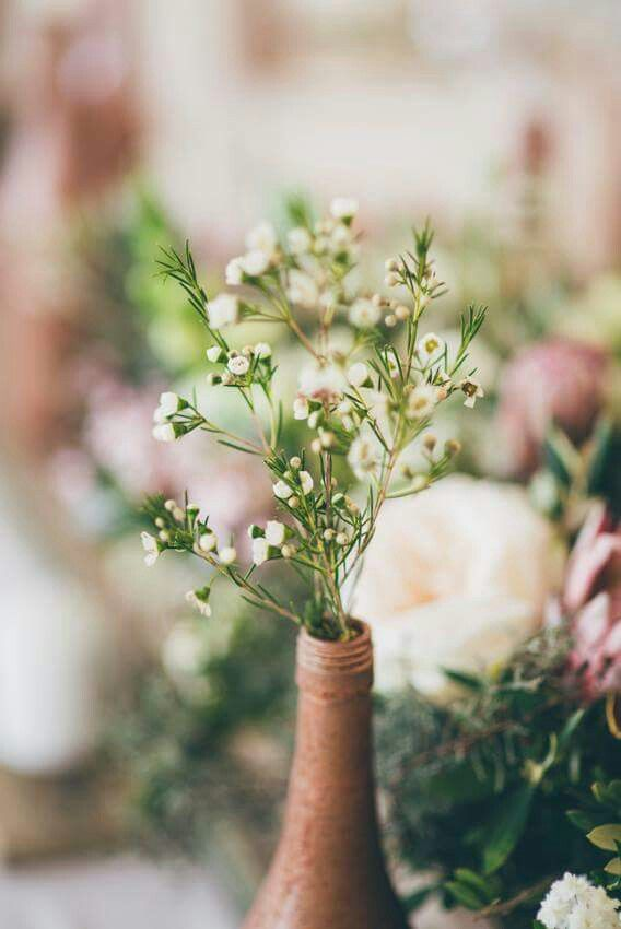 The cape fynbos really makes nice wedding flowers and its less expensive than roses or any other flower