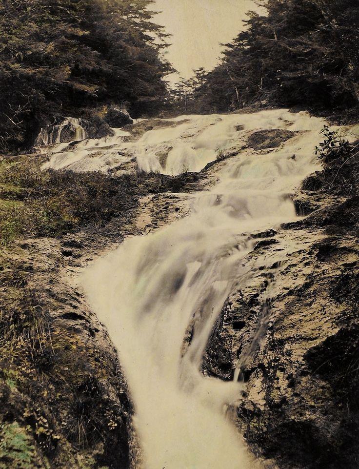 Rindzo Wasserfall | 1890-1900  | Museum für Kunst und Gewerbe Hamburg | CC0