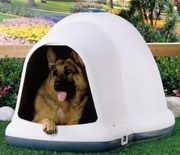 The Igloo Dog House Why Your Dog Will Love It!