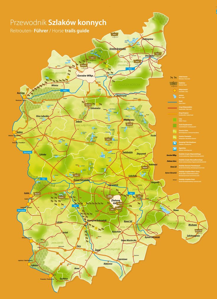 Horse trails map in Lubuskie #horse #horseriding #horsetrail #Lubuskie #Poland