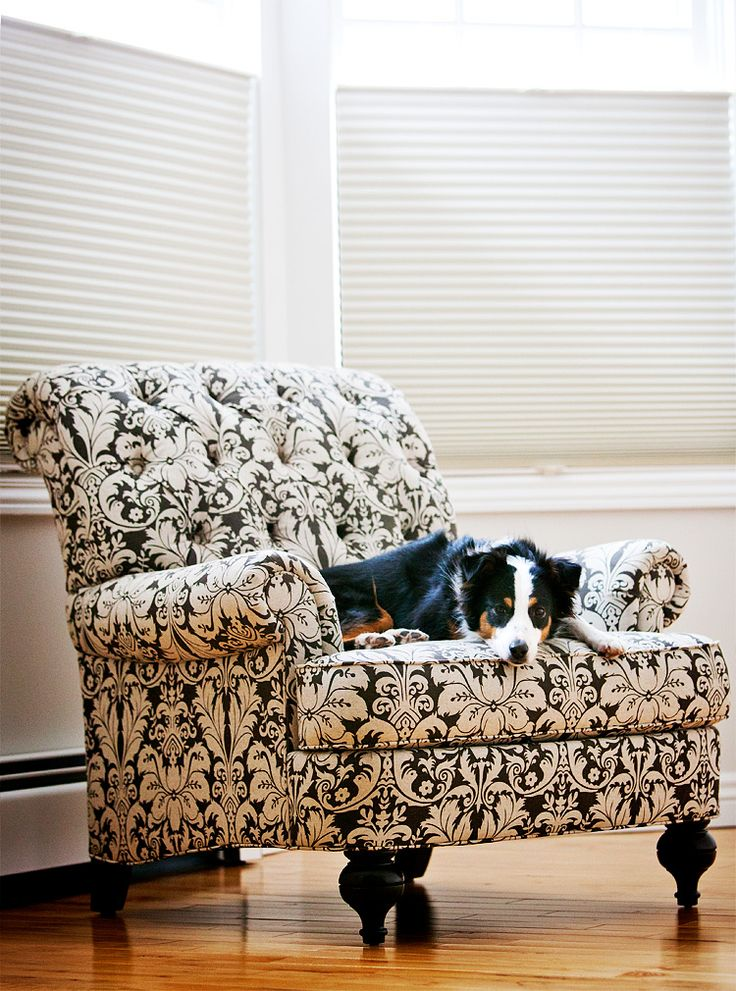 For my dressing room: Allen Chairs Lov, Living Rooms, Decor Ideas, Chairs Offices, Reading Chairs, Chairs Affair, Master Bedrooms, Bedrooms Nooks, Ethan Allen Chairs