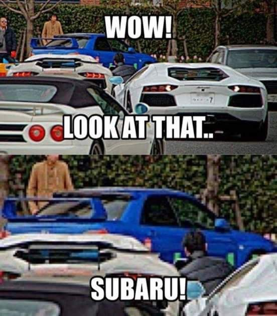 That'd be me. I love exotics, but come on, that's a Subaru Impreza. Who doesn't love Subie?