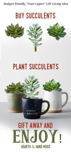 These Hearth & Hand mugs are perfect for anyone with a love for the rustic, farmhouse style decor. Plant a succulent in them, and they can be displayed year round.  So budget-friendly that you might need to get one (or more) for yourself while you're buying for others. #christmasgift #hearthandhome #mugs #coffee #plants #budgetfriendly #farmhousestyle #rustic #vintage #affiliatelink