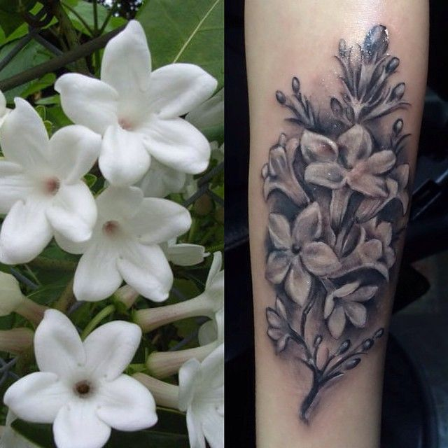 The Sampaguita flower is the national flower of The Philippines and it symbolises love, purity, devotion, dedication, strength and fidelity.  There are three major variations and this one is 'Maid of Orleans': single layered with five rounded petals  #sampaguita#sampaguitatattoo#sampaguitaflower#ink#tattoo#pinoypride#pinoyako#filipino#london#shoreditch