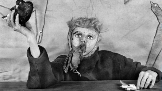 Asylum of the birds: in volo negli abissi della natura umana con Roger Ballen