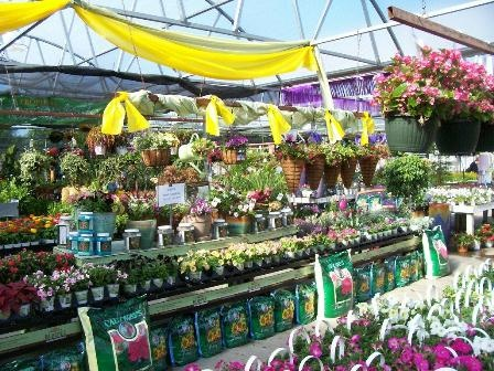 17 Best Images About Burpee Home Gardens On Pinterest