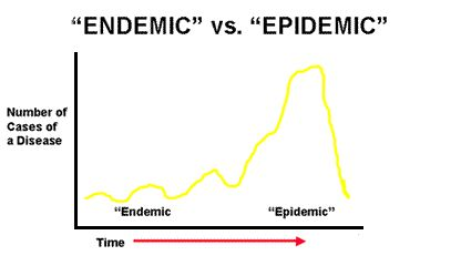 Endemic and epidemic are two terms used for epidemiology to describe the occurrence and longevity of a disease. As shown in the picture endemic has the lowest time for the continued occurrence of a disease while epidemic is in the higher end of time a disease lasts among a greater size population.