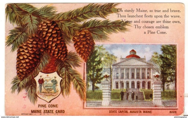 1910 Postmarked Postcard State Capitol Augusta Maine ME