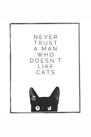 .Never trust a man who doesn't like cats