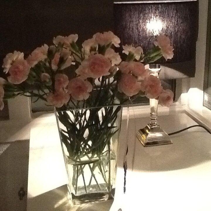 Zacht roze anjers.
