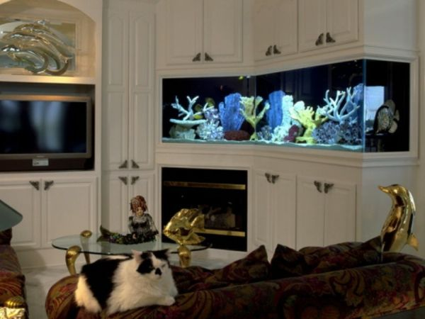 les 25 meilleures id es de la cat gorie aquarium avec meuble sur pinterest meuble aquarium. Black Bedroom Furniture Sets. Home Design Ideas