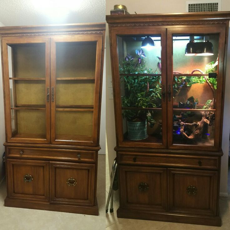 Diy chameleon terrarium from an old China Cabinet
