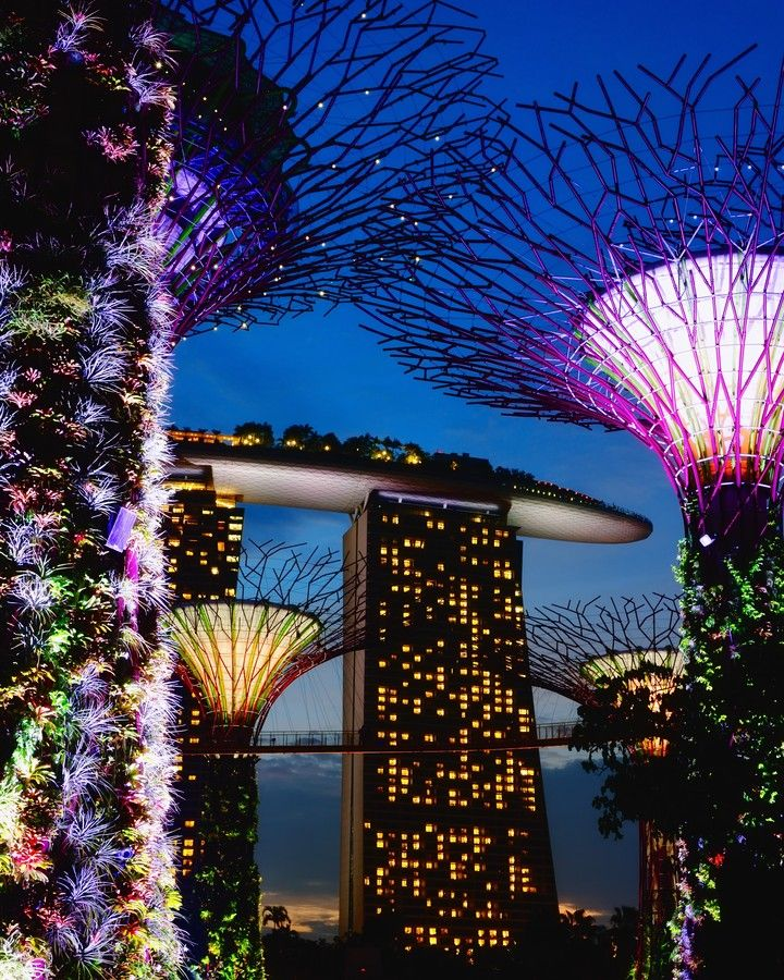 """The Gardens by the Bay is a park spanning 101 hectares of reclaimed land adjacent to the Marina Reservoir. The park consists of three waterfront gardens: Bay South Garden, Bay East Garden and Bay Central Garden. The park is an integral part of a strategy by the local government to transform Singapore from a """"Garden City"""" to a """"City in the Garden""""."""