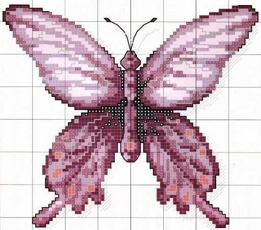 ­Ponto cruz: borboletas: Point, Butterflies, Search, Borboleta3 5B1 5D Jpg 512 452, Cross Stitch, Cruz Mariposas, Crosses Stitches, Crosses Stitchbutterfli, Cross