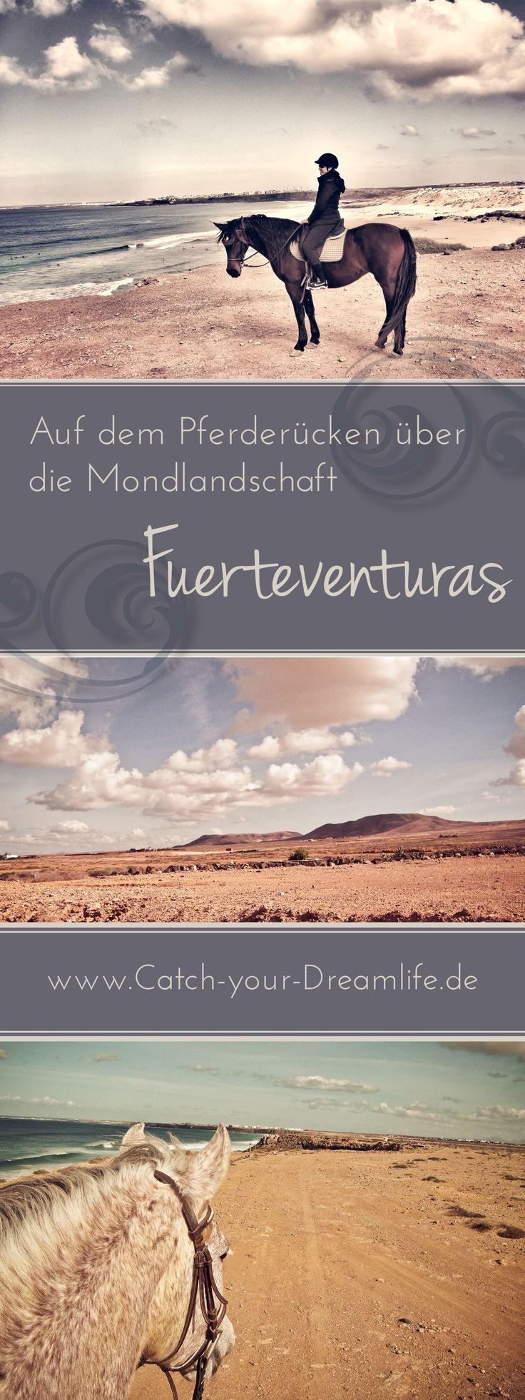Im Urlaub auf dem Pferderücken über die Mondlandschaft Fuerteventuras, Spanien reiten. Das Reiten am Strand ist immer ein besonderes Erlebnis.