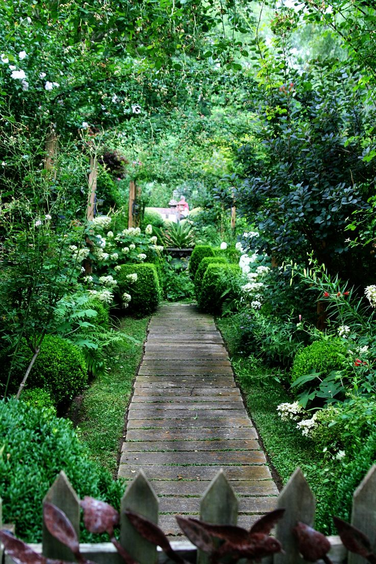 Beautiful natural gardens - Lovely Jungle Garden