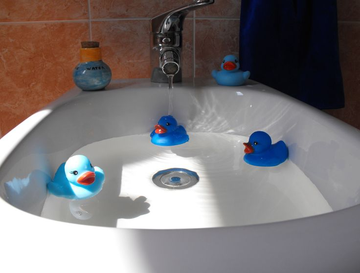The four ducks in the bidet - Blu Bed & Breakfast