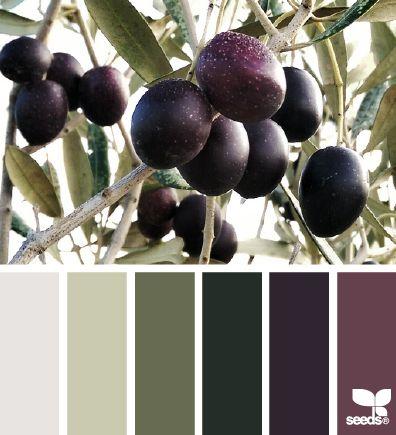 design seeds | olive color | for all who ♥ color