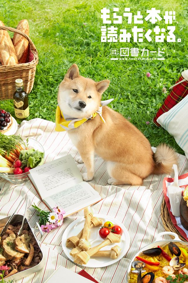 spring picnic♥️/2013 春/図書カード/poster/