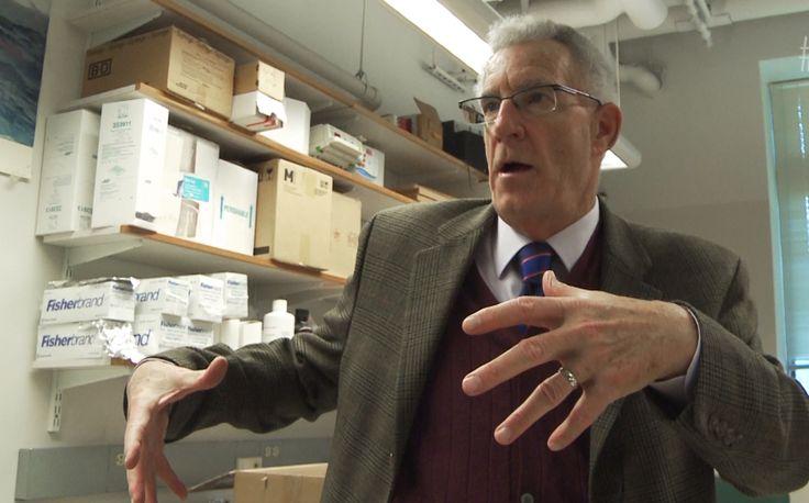 Cancergåtan är löst. Det säger en erkänd professor vid Boston College, professor i biologi Tom Seyfried som funnit en metod som kan hämma cancersvulster.
