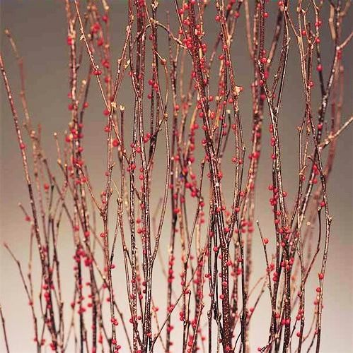 17 Best Images About Decorative Branches On Pinterest Vase Fillers Black Glitter And Branches