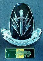 Soldier's pride